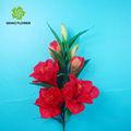 كبير الرأس الحرير الحجمكبيرة أسماء زهرات زنبق الزهور تستخدم للزينة
