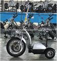 2013 nouveau CE a approuvé 350w électrique Segway scooter char avec double moteur d'entraînement