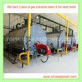 alta eficiencia de la caldera de gas y petróleo con un control automático completo
