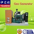Generador de gas natural establecido 50kw