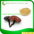 Extracto de ganoderma lucidum polvo/seta de reishi proveedor