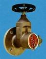Válvula hidrantes