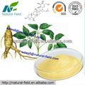 Panax ginseng p. E. 80% de la certificación gmp fabricante