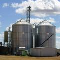 silos para el almacenamiento de arroz
