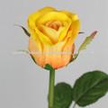 flor color de rosa para la decoración casera
