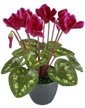 de alta calidad de la flor artificial artificiar planta