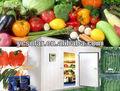 almacenamiento en frío para mantener las verduras frescas