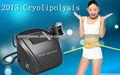 2013 mais novo máquina velashape cryolipolysis para venda