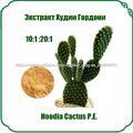 Экстракт Худии Гордони Hoodia Cactus P.E.