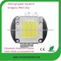 Shenzhen buena calidad 20W LED viruta luces LED