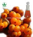 Seabuckthorn aceite de la fruta orgánica con, de buena calidad