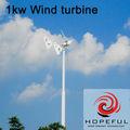 1000w de turbina de viento generador de imán permanente