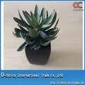 Plantas Ornamentales artificiales de interior