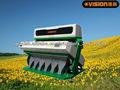 semillas de sésamo máquina de clasificación de color, las semillas de girasol de la máquina de limpieza