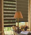 2014 venta caliente promoción de buena calidad de tela escarpada cebra cortinas