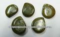 Loose Brown amonita de la joyería, piedra preciosa de la joyería de plata del diseñador