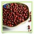 low price adzuki bean price with good quality
