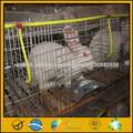 jaula del conejo con el certificado ISO
