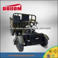 250 Cargo triciclo adulto