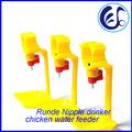 gaiola de galinha equipamento automático bebedouros para aves fazenda