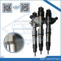 DLLA153P1720 para inyector de combustible Bosch 0 445 110 317