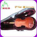 profissional Violino
