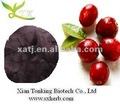 cranberry suco concentrado