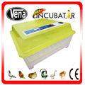 Mejor precio completo aves pequeñas / huevo de codorniz incubadora automática de mini incubadora del huevo para la venta