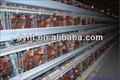 Caliente la venta de buena calidad automática h- tipo de pollo coop de capa
