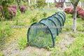 anti aves de malla 500cm túnel del jardín de la cubierta de efecto invernadero