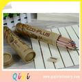 24 piezas de madera natural de dibujo lápiz de color en el tubo de papel con sacapuntas