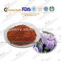 Extrait de safran crocétine/jaune safran en poudre/safranal crocine extrait naturel