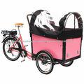 triciclos eléctrico