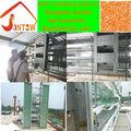 2013 caliente la venta de acero de malla de alambre jaula de pájaro trampa