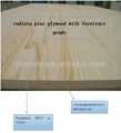 pine plywood/furniture grade pine plywood/radiata pine plywood