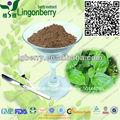 Natural de la planta extracto de raíz de stemonae extracto/base stemonae extracto de la raíz