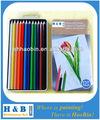 12 lápiz de color