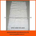 plaque, la plaque naturelle de la peau lapin blanc de fourrure de lapin