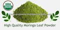 orgánica de proveedor de hojas de marango en polvo y otros productos de moringa