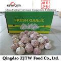 Precio de ajo en el mercado de china 5.0cm