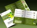 Brochur/volante de diseño e impresión de china fuente de la fábrica