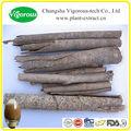La muestra libre de extracto de magnolia/de alta calidad de magnolia extracto en polvo/magnolia en polvo