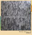 las plumas de la imagen impresa tela de algodón para peached camisa para hombre