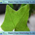 El precio más bajo para 100% natural puro ivy extracto del tallo