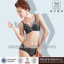Ropa interior vendedor caliente atractivo de las señoras de la ropa interior del sujetador de