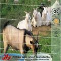 Caliente- galvanizado por inmersión en ganado ovino y caprino cerca