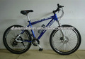 Deseo Aluminum Rim Mountain Bike
