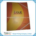 de colores de papel de presentación carpeta de archivos con cierre elástico