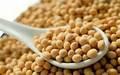 Femenino productos para cuidados de la salud- extracto de soja