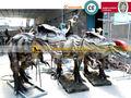 robots dinosaurios caminar los niños paseos